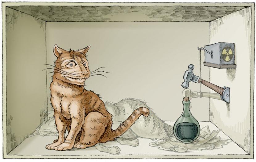 Schr%C3%B6dingers-Cat-3